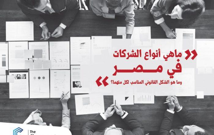 أنواع الشركات في مصر